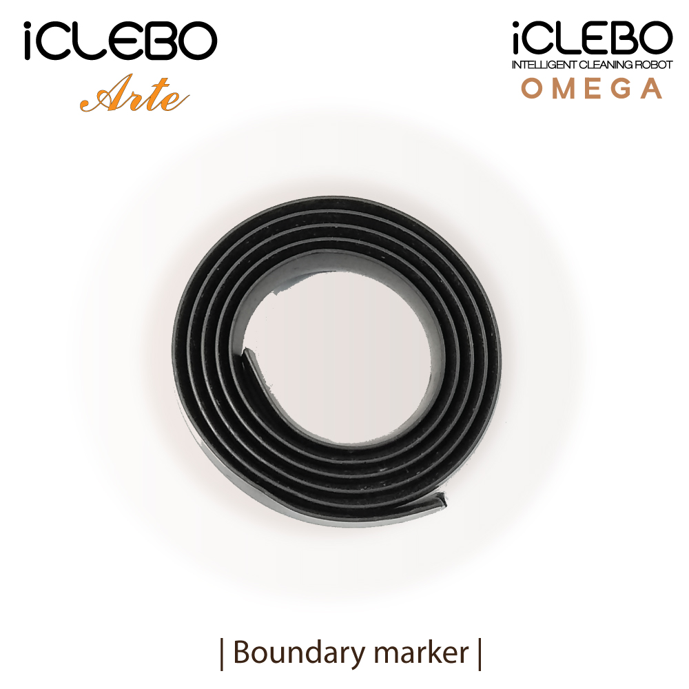 Boundary marker BM1-Arte for iCLEBO